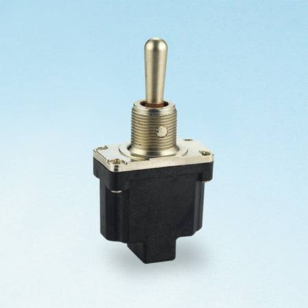 T6013 Toggle Switches